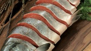 鮭って白身なの?アスタキサンチンの謎。